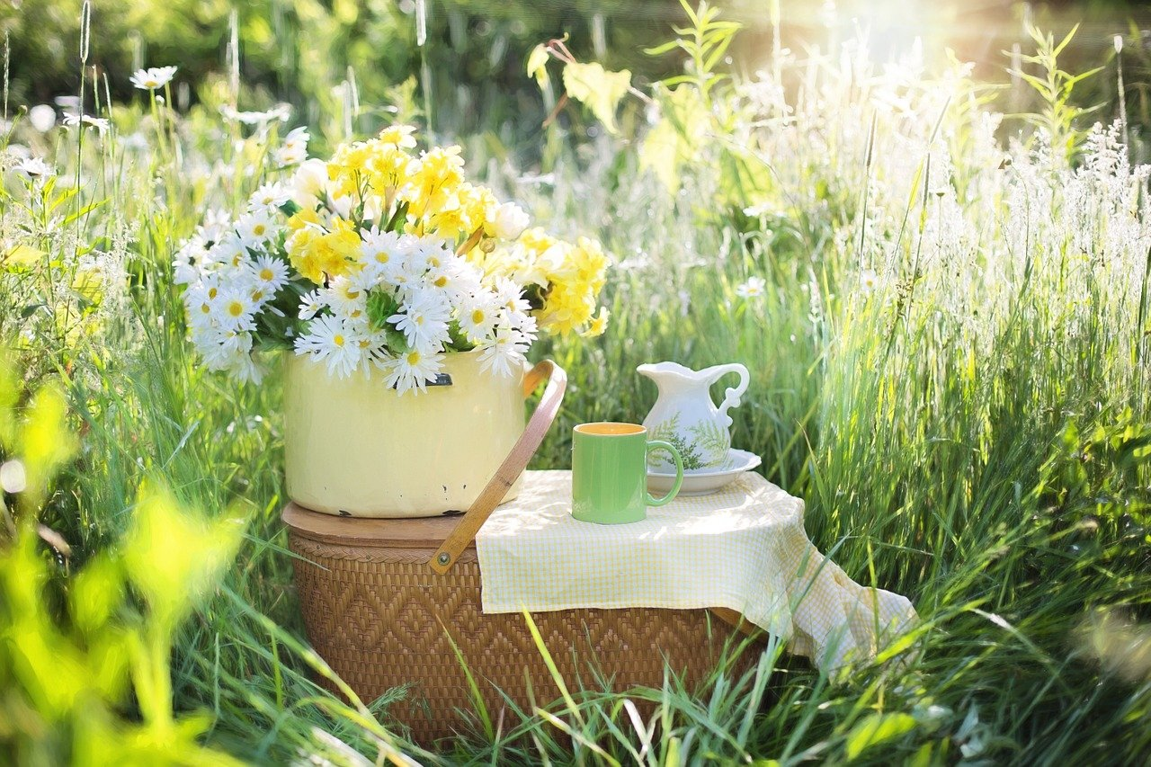 Morning, Tea